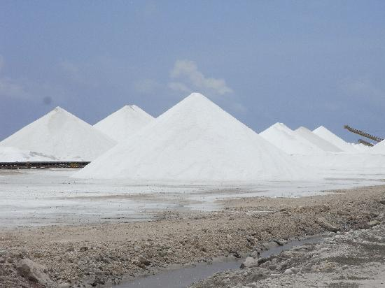 Bonaire: Salinen