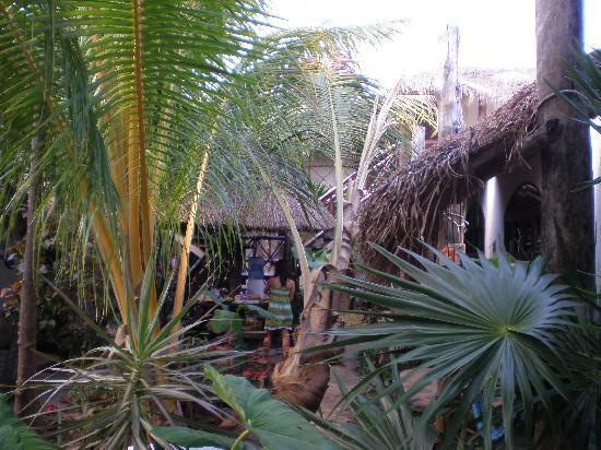 Hotel Kin Ha Pueblo: jardin  kin ha pueblo