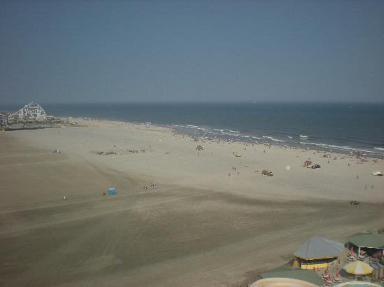Morey's Piers and Beachfront Water Parks : view from the ferris wheel!