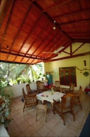 Palm Grove : Top Terrace