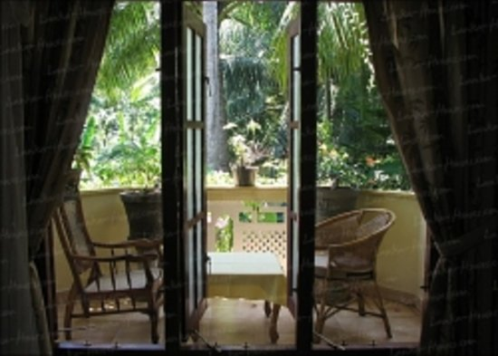 Palm Grove: Balcony 1