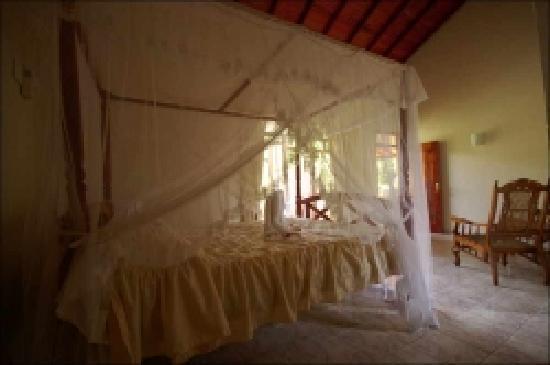 Palm Grove: Bedroom