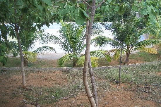 Indien Hermitage: piscine!!