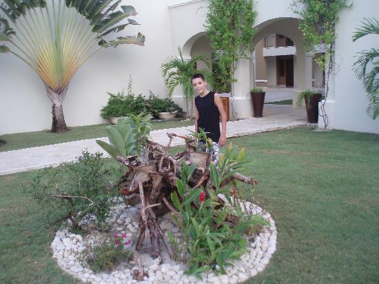 now larimar punta cana decoracion en los jardines
