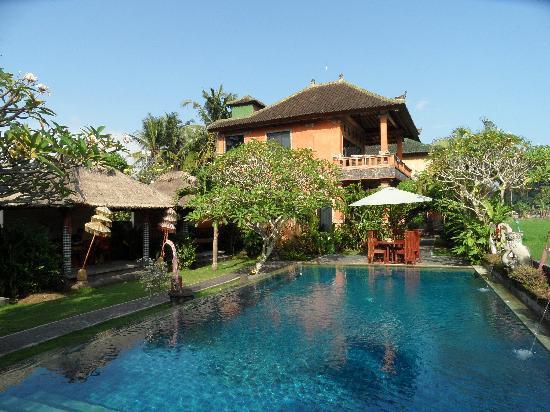 Mandala Desa : La piscine