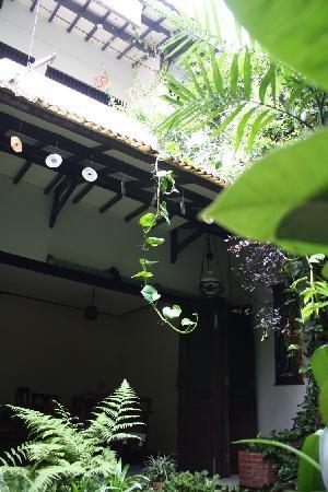 Gunung Guesthouse : Life