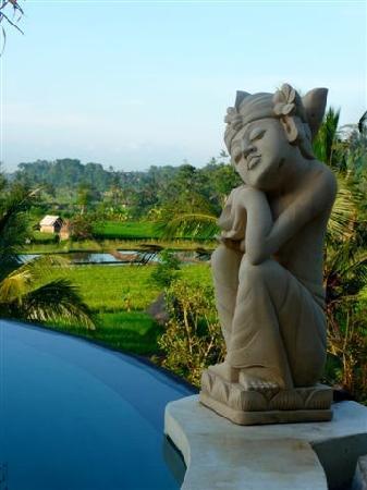 Surya Shanti Villa: piscine et statue