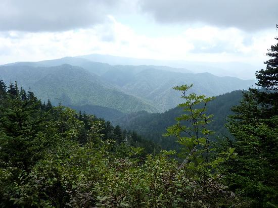 LeConte Lodge: one of the many spectacular views