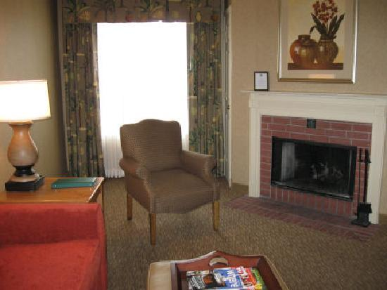 Homewood Suites by Hilton Indianapolis-Keystone Crossing: Part of the living room in the suite
