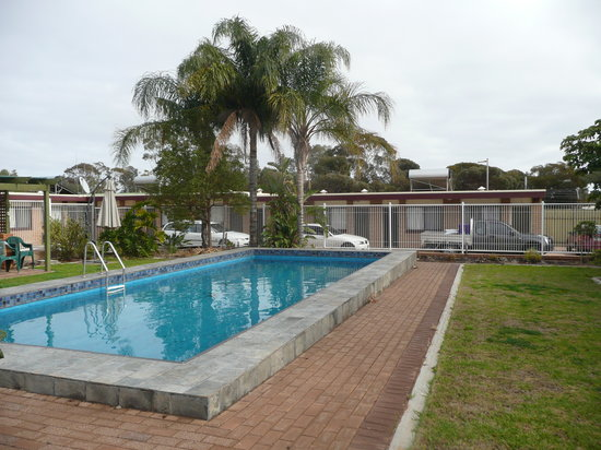 Acacia Ridge Motor Inn : Swimming pool
