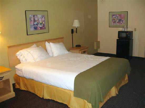 Travelodge Ukiah: Room