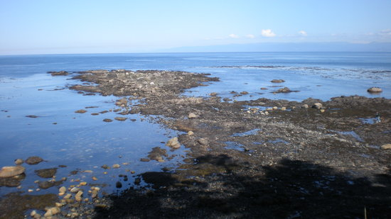 Port Angeles, Etat de Washington : The Tongue from above