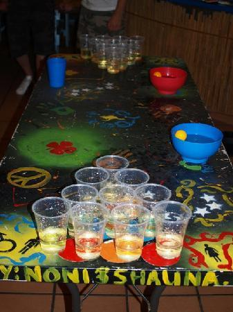 Mooloolaba Beach Backpackers: Thursday nights..... Goon Pong!!