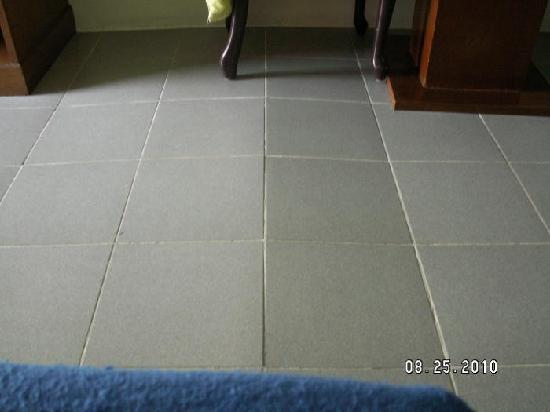 Rompo Mansion: Floor Tile came up