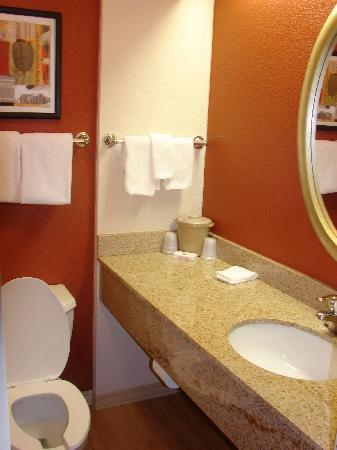 Red Roof Inn - El Paso East: A view of the bathroom.  Tub/shower to the left