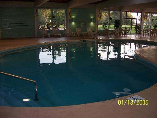 Fox Hills Resort: Indoor Pool