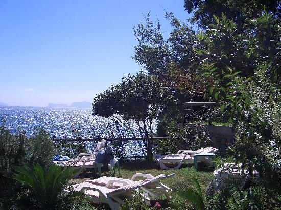 Giardino dell 39 albergo foto di hotel giardino delle ninfe e la fenice ischia tripadvisor - Giardino delle ninfe ischia ...