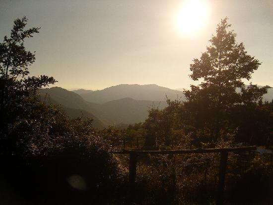 Campsite La Futa : Peaceful evenings