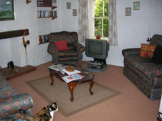 """Clifftop Cottages: lounge with """"borrowed"""" ovely cat"""