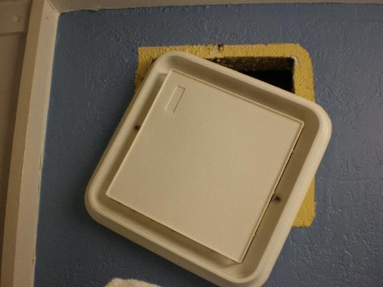 International Palms Resort & Conference Center Cocoa Beach: Hole in Bathroom wall allowed bugs in.