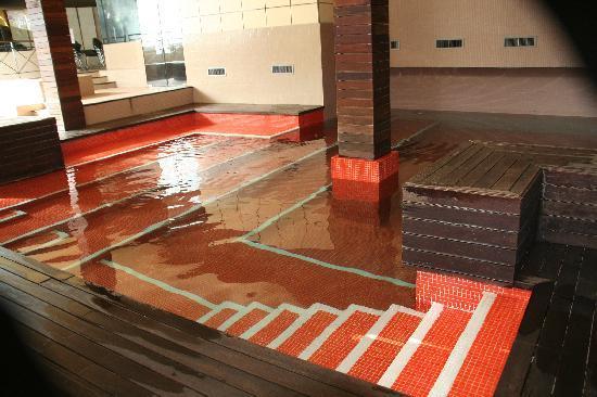 Alp, Espagne : piscina interior