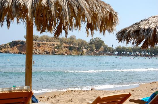 Ammos Hotel: Beach