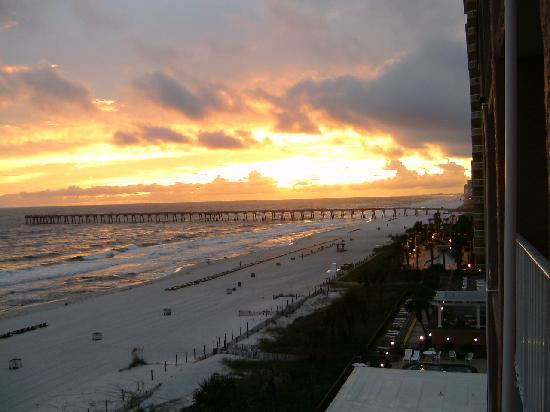 sunset picture of osprey on the gulf panama city beach. Black Bedroom Furniture Sets. Home Design Ideas