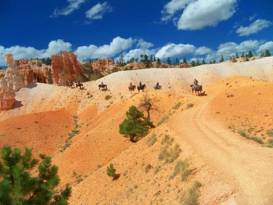 Canyon Trail Rides : Riders in the distance
