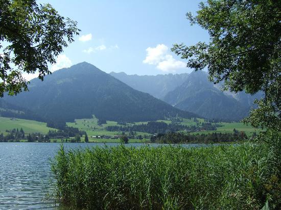 Ferienclub Bellevue am See: Blick von der Liegewiese auf den See + Kaisergebirge
