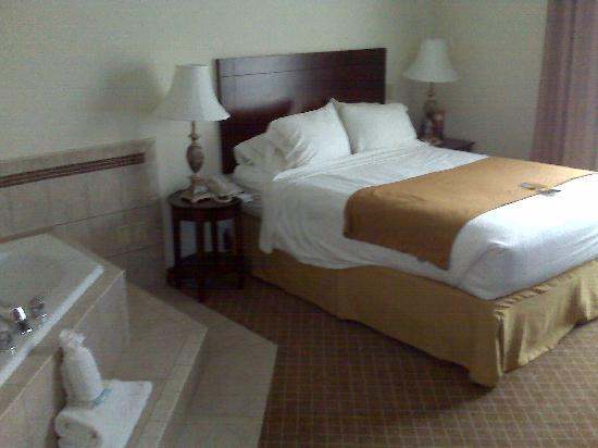 Holiday Inn Express Hotel & Suites Webster: Bedroom