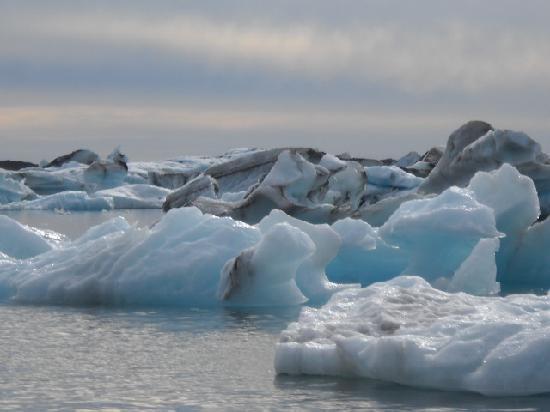Reykjavík, Island: iceburgs
