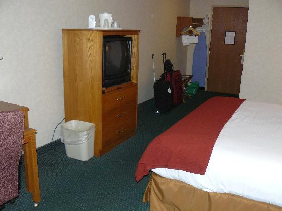 Holiday Inn Express Mishawaka: Room view 2