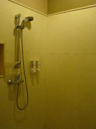 Tanaya Bed & Breakfast: toilet