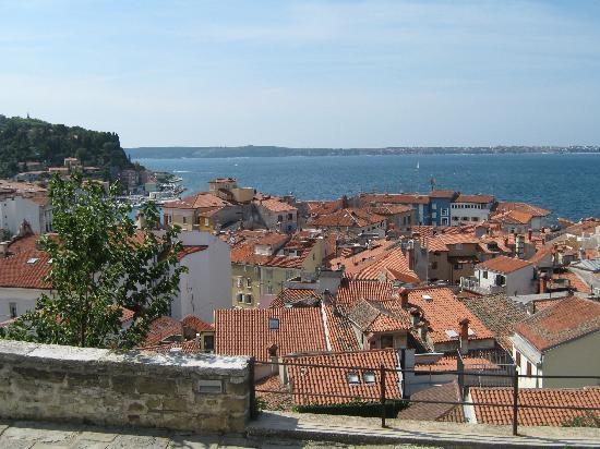 Пиран, Словения: Piran Aug 2010 follow the coast to Crotia