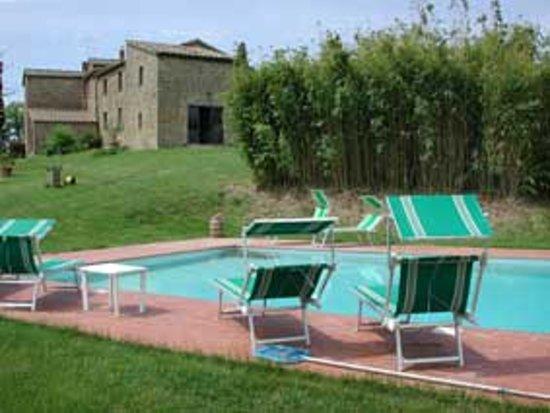 Monte San Savino, Italia: La piscina e l'agriturismo