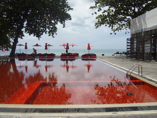 The Library: la piscine
