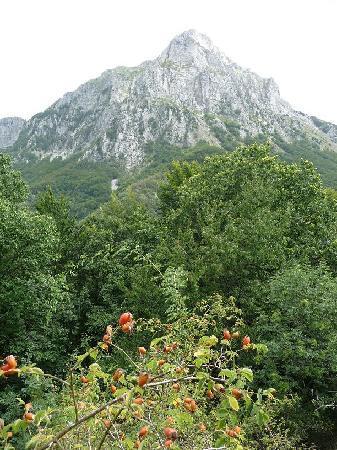 Antico Borgo Isola Santa: Pania della Croce mountain