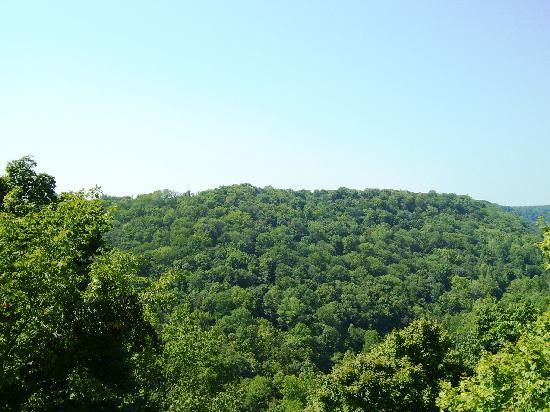 Clifty Falls State Park: View from the observation tower.