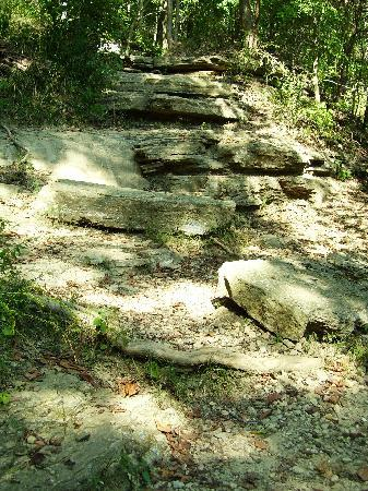 Clifty Falls State Park: Hiking trail.