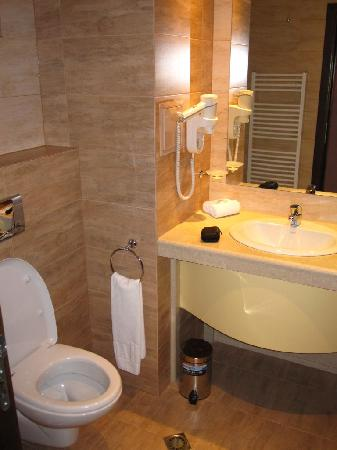 Budapest Hotel: Vista baño Deluxe 1