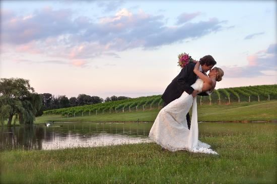 Keswick Vineyards: Vineyard Weddings
