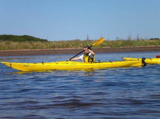 Νησί Πρίγκιπα Εδουάρδου, Καναδάς: Malpeque kayaking