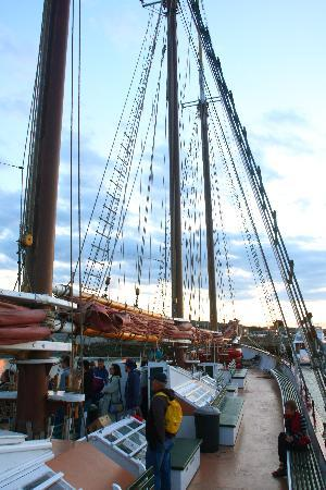Downeast Windjammer Cruises Lines: Make sure everyone is off the sunset cruise before the sun goes down!!