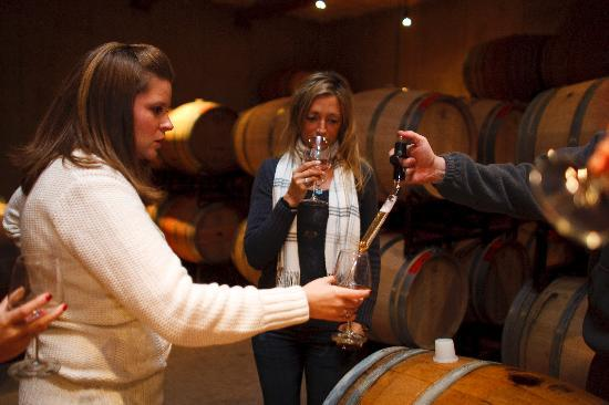 Charlottesville, Βιρτζίνια: Barrel tasting at Pollak Vineyards with Arcady Wine Tours