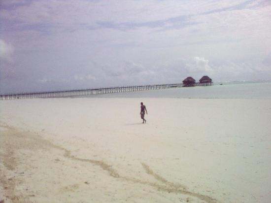 Hotel Dongwe: La splendida spiaggia