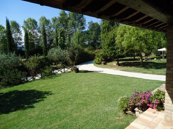 Agriturismo ColleParadiso: Il curatissimo giardino