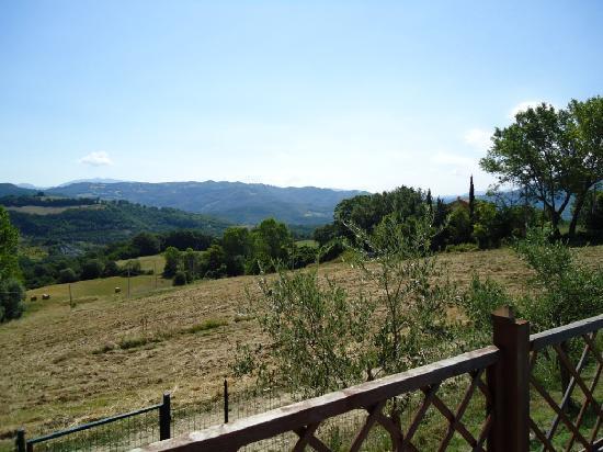 Agriturismo ColleParadiso: Panorama dalla piscina