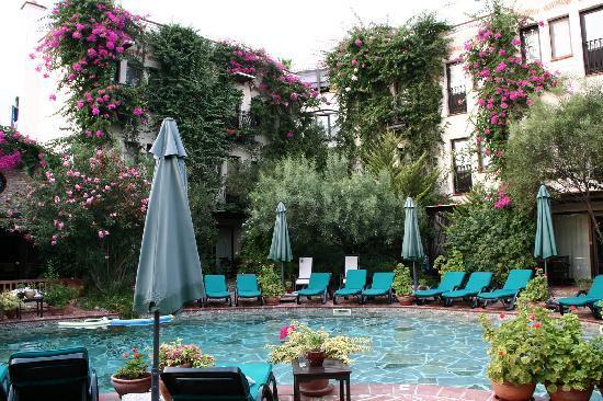 El Vino Hotel & Suites: Piscina