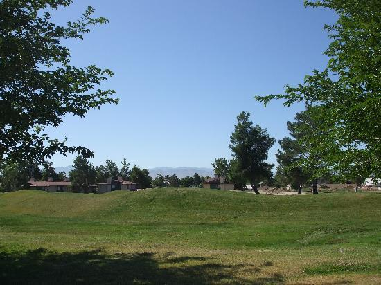 Green Tree Inn & Extended Stay Suites: Grounds with view to golf course