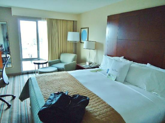DoubleTree by Hilton Chicago North Shore: Room